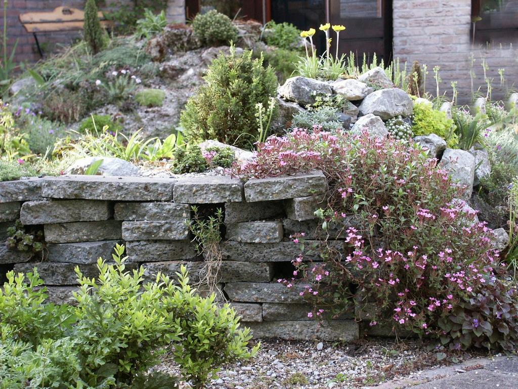 Apuntes sobre dise o y construcci n de rocallas jardines for Diseno de jardines uruguay