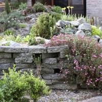 Apuntes sobre diseño y construcción de rocallas