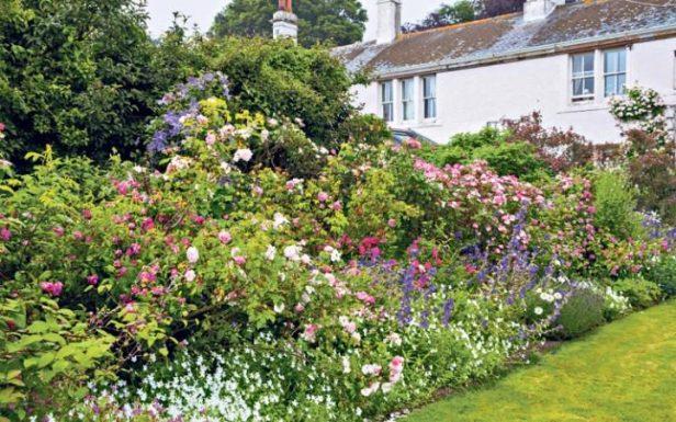 rose-garden-large_transeo_i_u9apj8ruoebjoaht0k9u7hhrjvuo-zlengruma