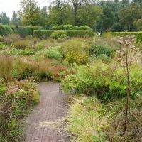 Piet Oudolf, el paisajista de las plantas herbáceas