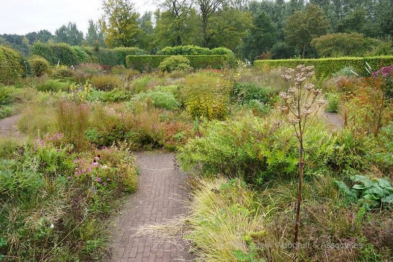 Piet oudolf el paisajista de las plantas herb ceas jardines sin fronteras - Disenador de jardines ...