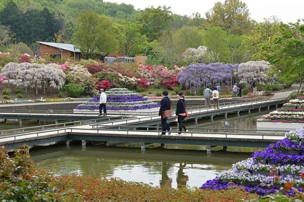 ashikaga-flower-park-a