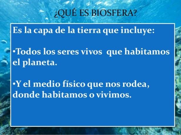 biosfera-3-638