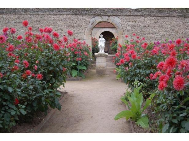 chateau_de_canon-qw-in_the_walled_garden_crevecoeur_en_auge-2