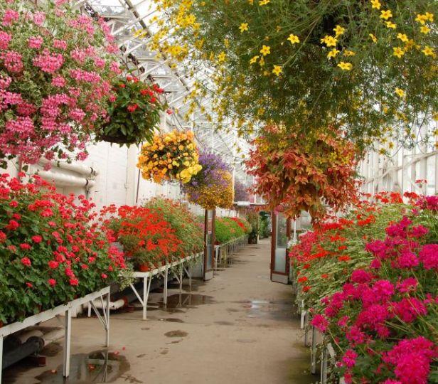 david-welch-winter-garden-1