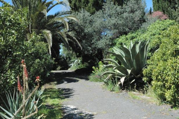 giardini-boccanegra-a-ventimiglia-kre
