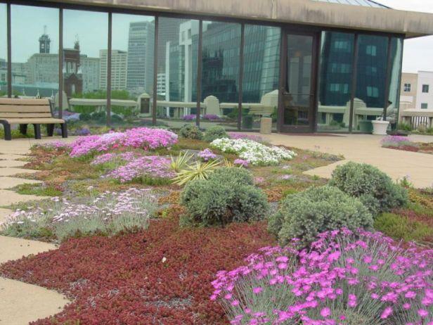 green-roof-atlanta-city-hall