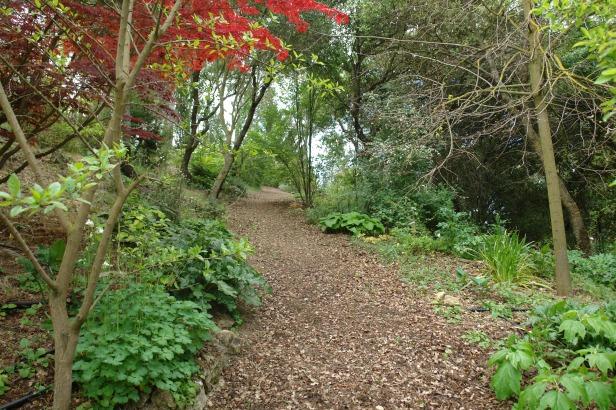 jardin-del-rosario-caminos-organicos-013