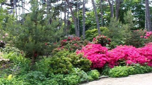 paris-parc-floralmaxresdefault
