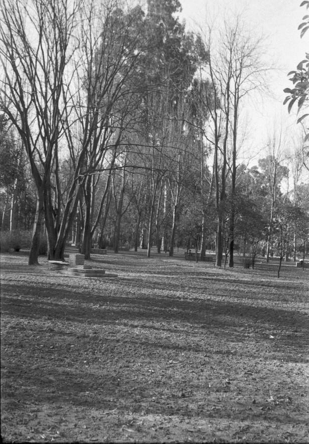 parque-restauracion-praderas-nuevas