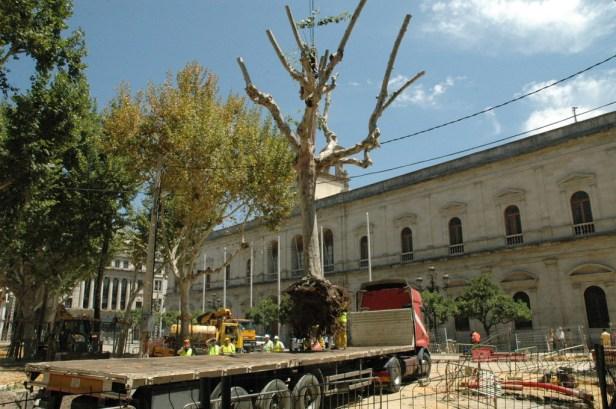 sevilla-julio-2006-plaza-nueva-11_redimensionar