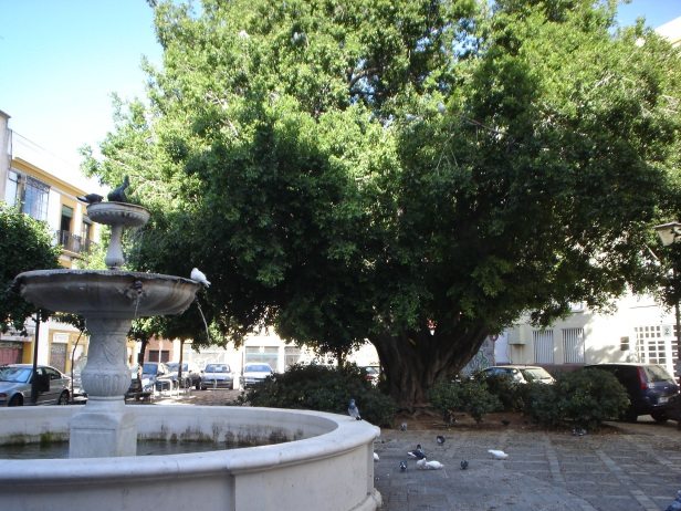 sevilla-plaza-de-san-leandro-1