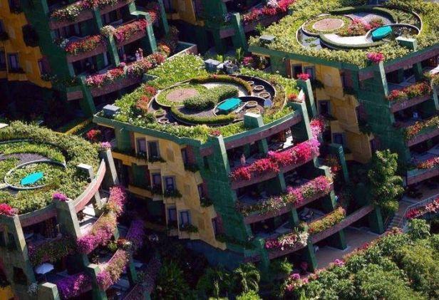 techos-verdes-a-d