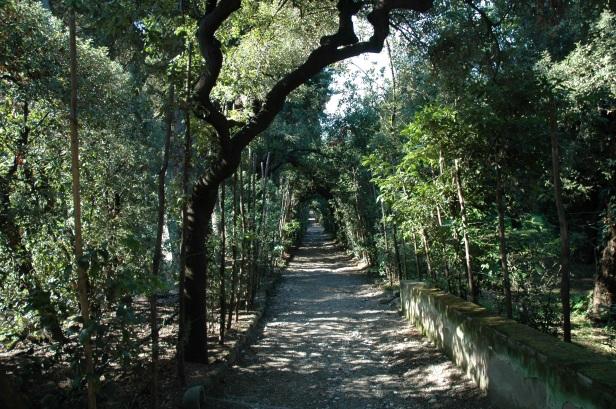 toscana-giardino-boboli-274