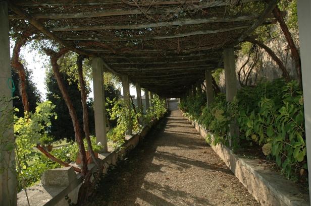 toscana-villa-medici-de-fiesole-463