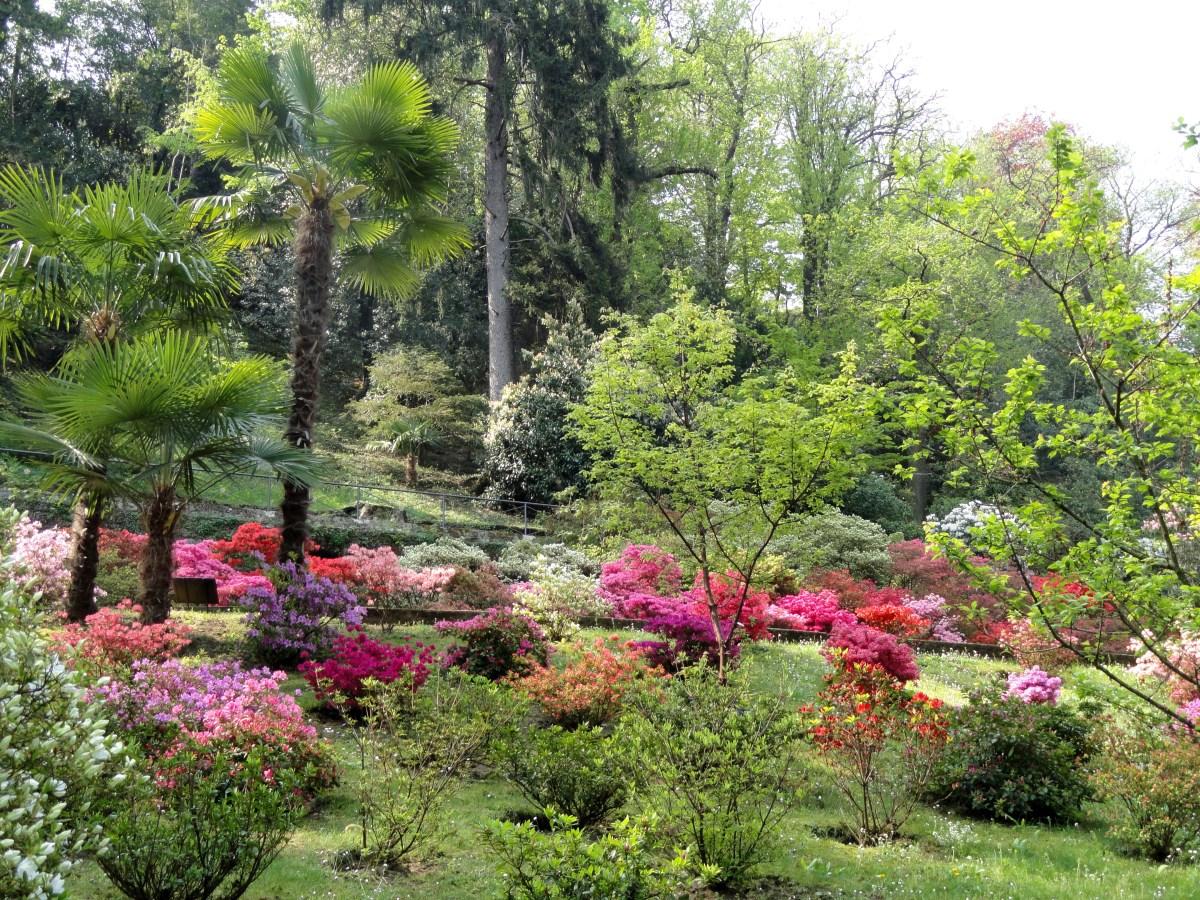 Del viaje a jardines del norte de Italia.-Lago de Como – Jardines ...