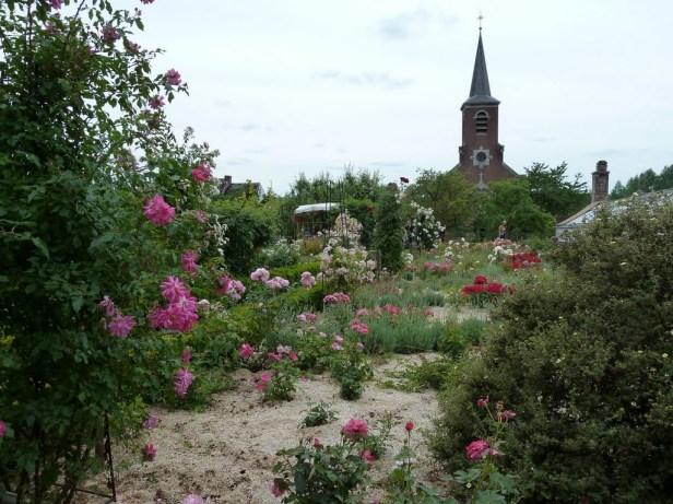 chateau-de-hex-roses-w