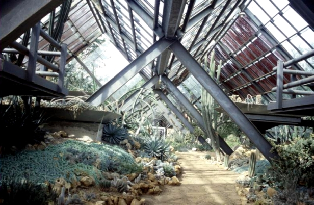 cuba-jardin-botanico-invernadero-w