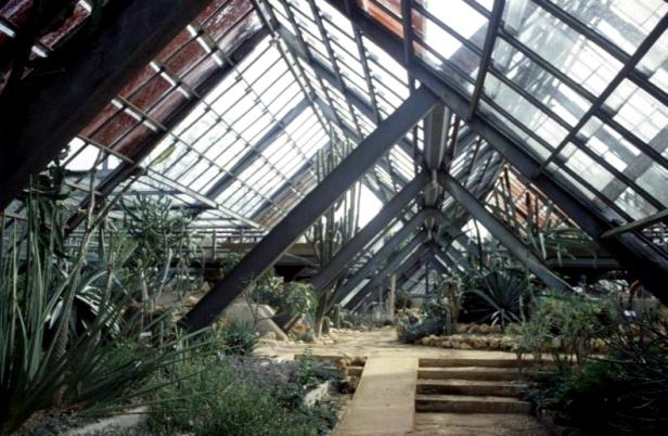 cuba-jardin-botanico-invernadero