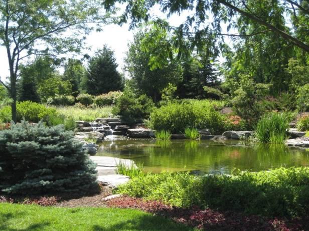 Del dise o de jardines contempor neos jardines sin fronteras for Jardin acuatico