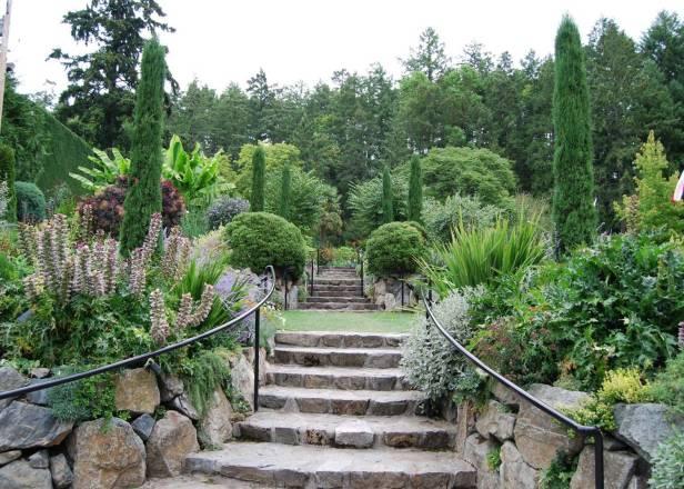diseno-jardin-mediterraneo