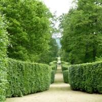 Capitulo VIII..-Jardín Inglés de paisaje y jardín paisajista francés