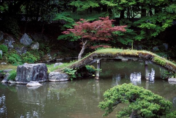 japon-bridge-sambo-in-2