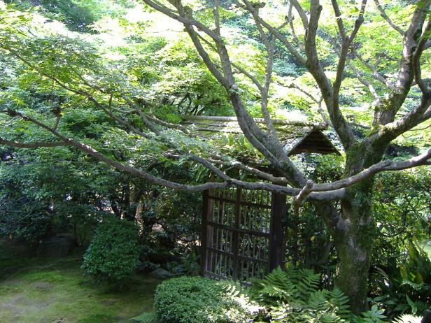 japon-elementos-puerta-rustica-de-la-casa-de-te-jardin-keishun-in-en-kyoto