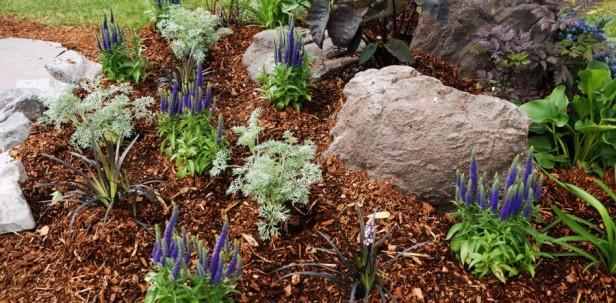 med-garden-mulch-900x444