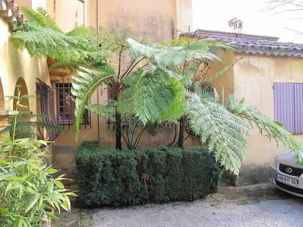 med-jardin-exotico-de-val-rhameh-menton-costa-azul