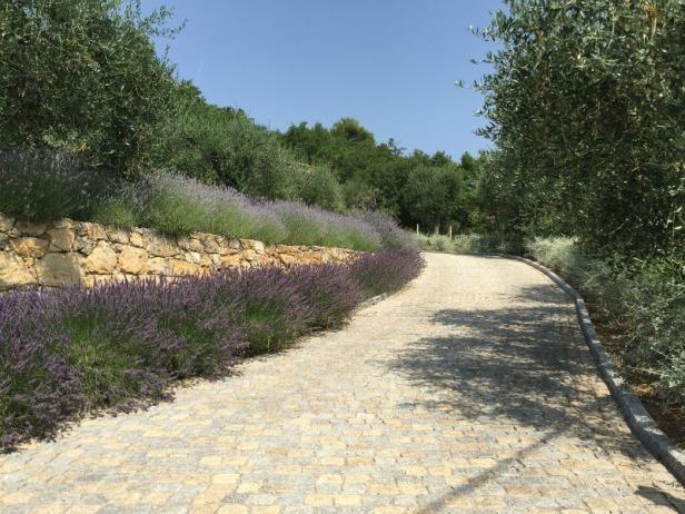 med-jardin-mediterraneo-le-rouret-francia