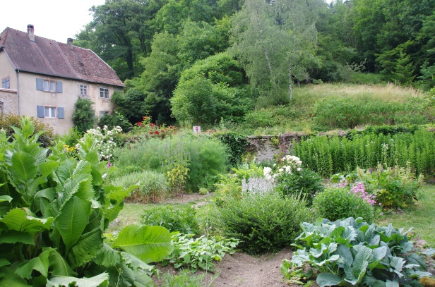 medieval-labbaye-de-murbach-lalsace