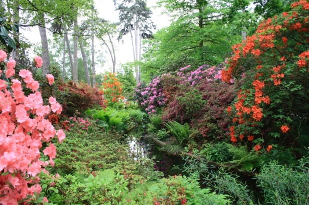 parc-floral-bois-de-vicennes-bea