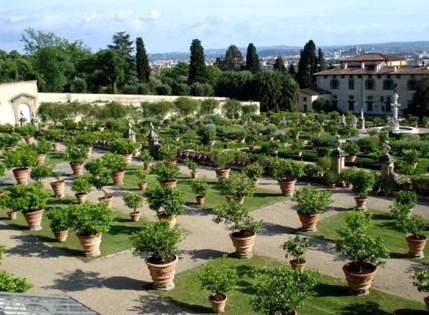 villa-medicea-di-giardino-castello-june-11-027