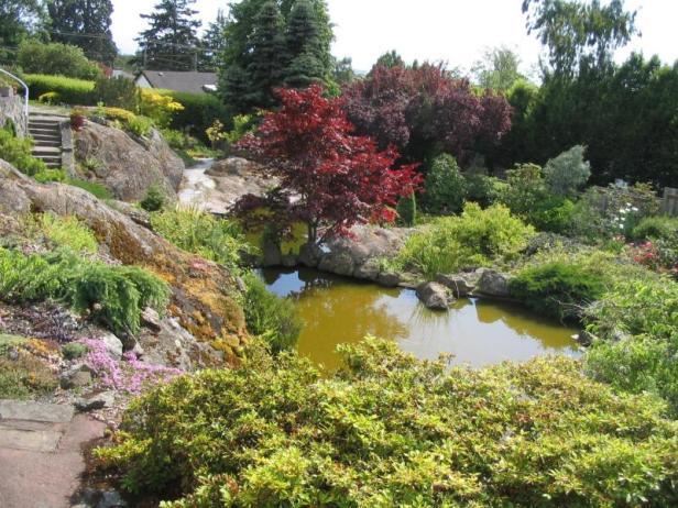 abkhazi-garden-2