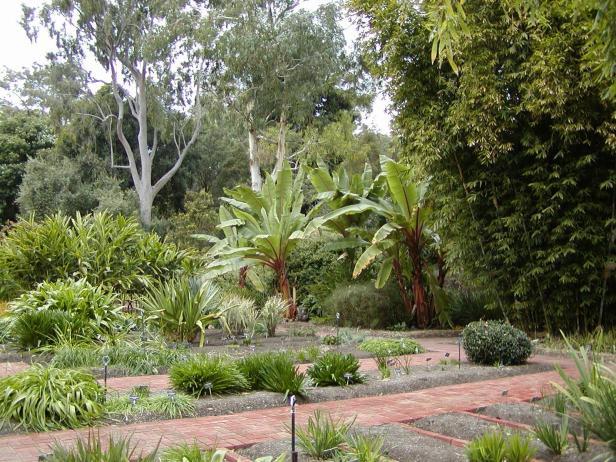adelaide-botanic-garden-16