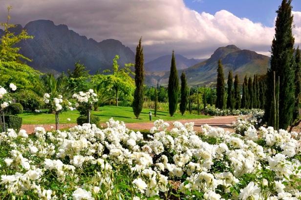 afr-franschhoek-open-gardens-la-providence