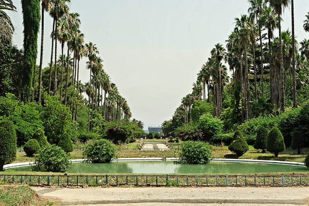 algeria-hamma-garden-xz1