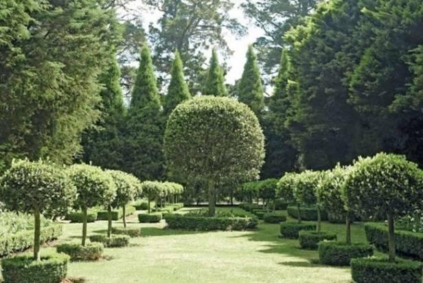 au-kennerton-green-garden