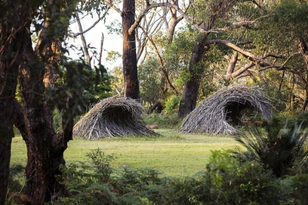 au-plantar-suenos-en-jardines-australianos