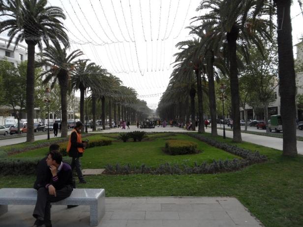 avenue-hassan-ii-fez-10
