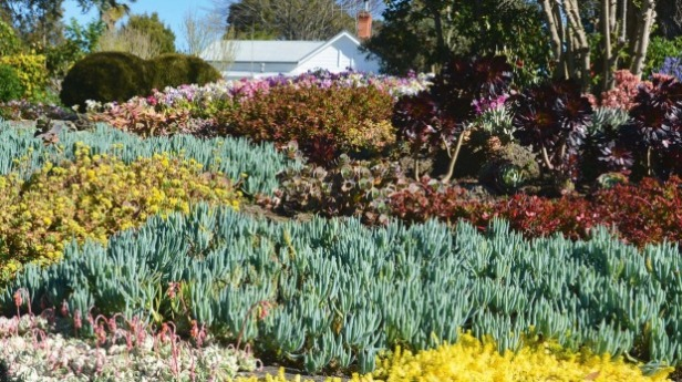 bason-botanic-garden-whanganui