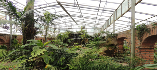bo-jardin-botanico-santa-cruz-de-la-sierra-bolivia