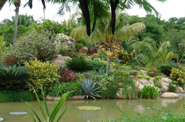 bo-jardin-botanico-cochabamba-bolivia-n