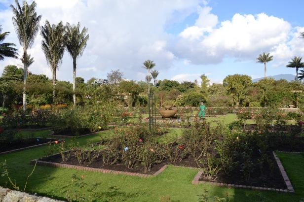 bogota-botanic-garden-ju