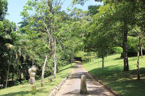 br-parque_da_cidade_na_gavea_01