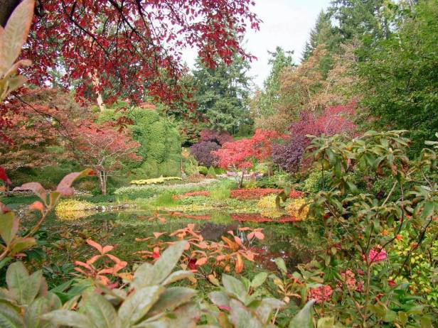 butchart-gardens-w
