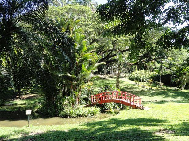 chinese_bridge_puerto-rico-_san_juan_botanical_garden_
