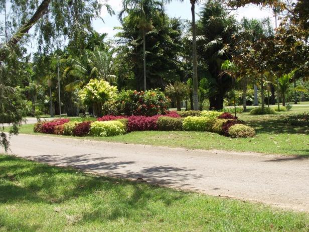 Jardín Botánico de La Habana