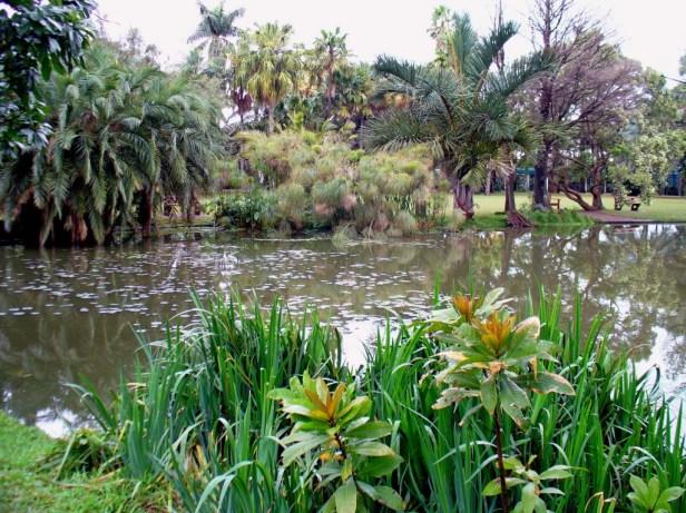 durban-botanic-garden-south-africa_redimensionar
